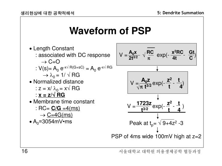 Waveform of PSP