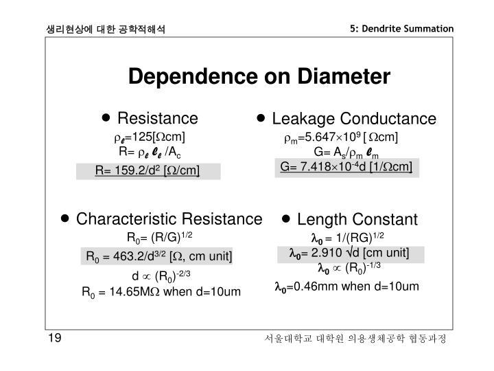 Dependence on Diameter