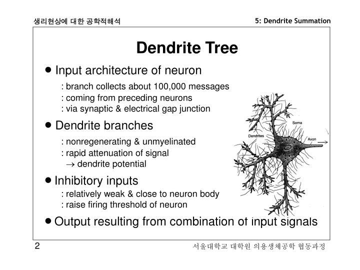 Dendrite Tree
