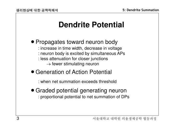 Dendrite Potential