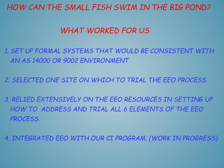 How can the small fish swim in the big pond