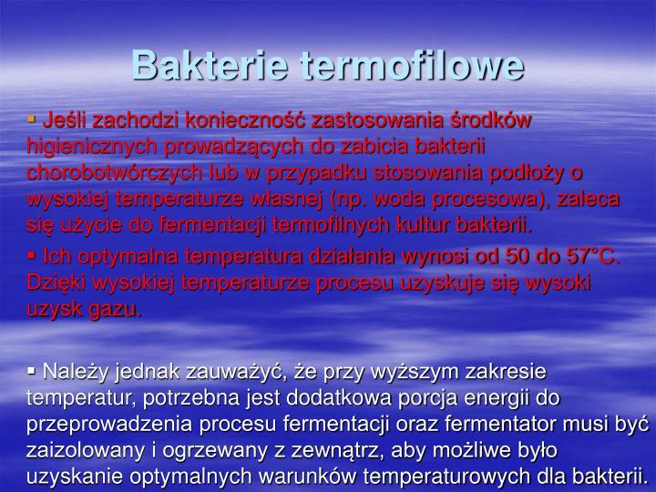 Bakterie termofilowe