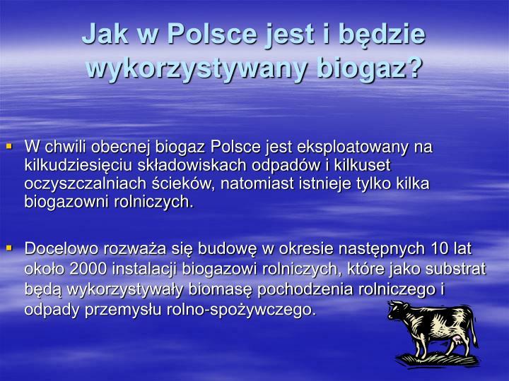 Jak w Polsce jest i będzie wykorzystywany biogaz?