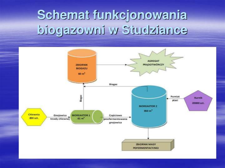 Schemat funkcjonowania biogazowni w Studziance