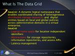 what is the data grid