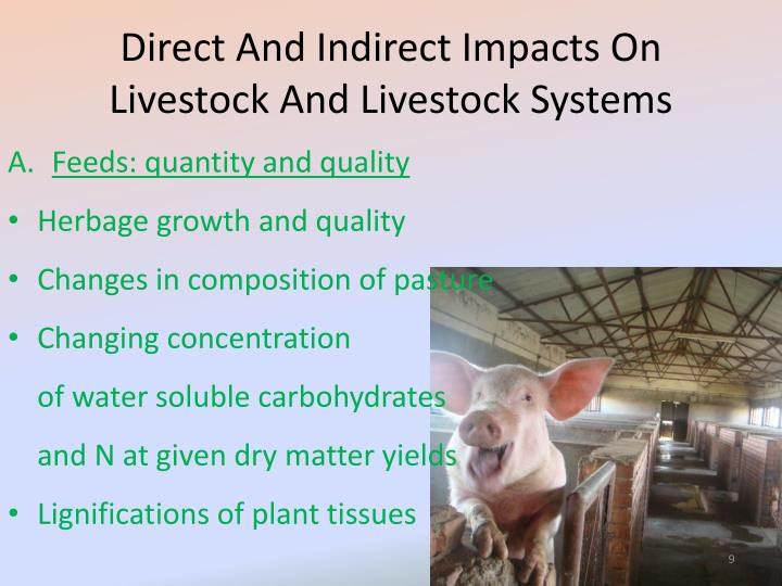 Direct And Indirect Impacts On Livestock And Livestock Systems