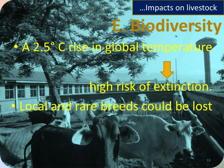 …Impacts on livestock