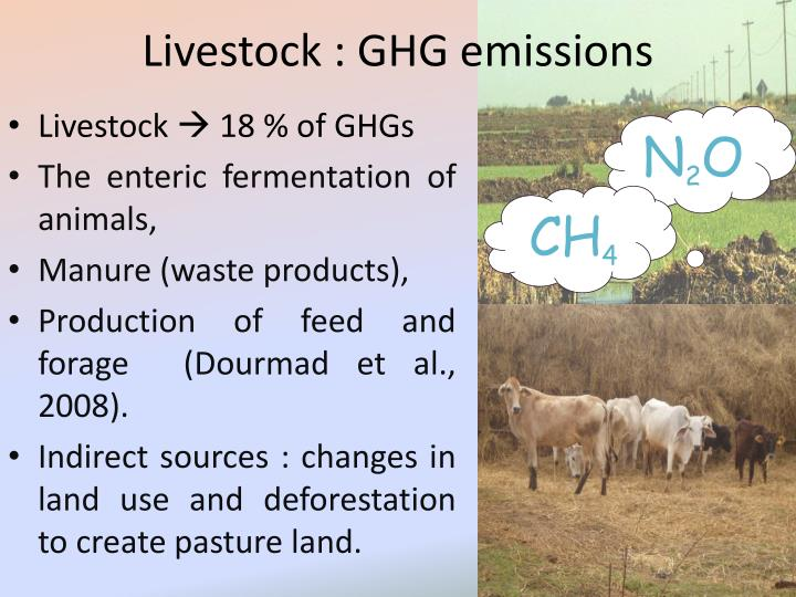 Livestock : GHG emissions