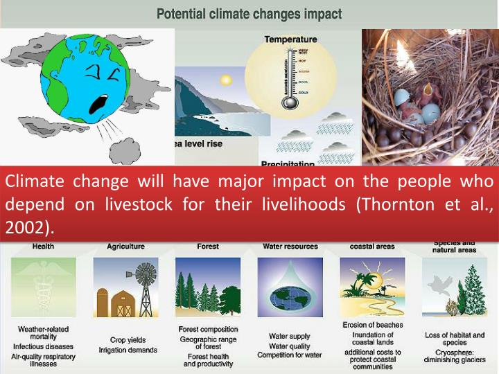 Climate change will have major impact on the people who depend on livestock for their livelihoods (Thornton et al., 2002).