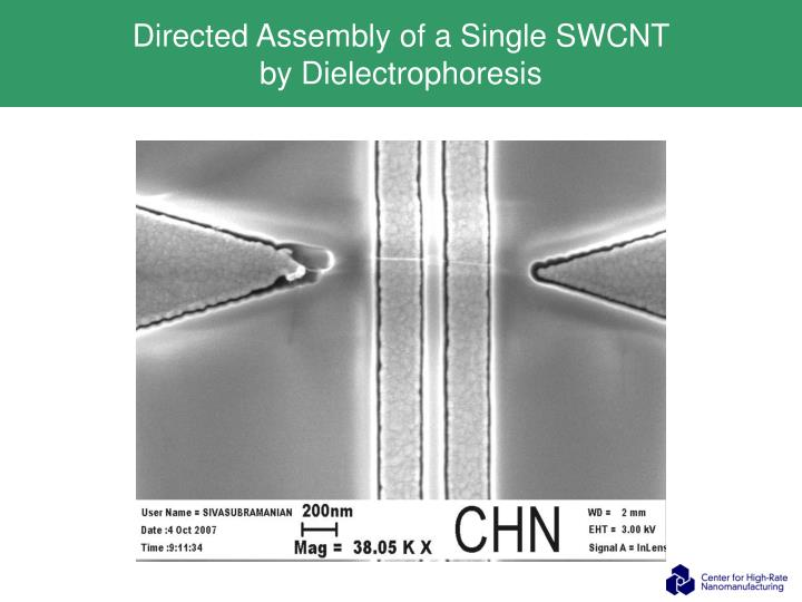 Directed Assembly of a Single SWCNT