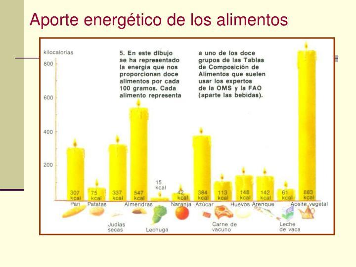 Aporte energético de los alimentos