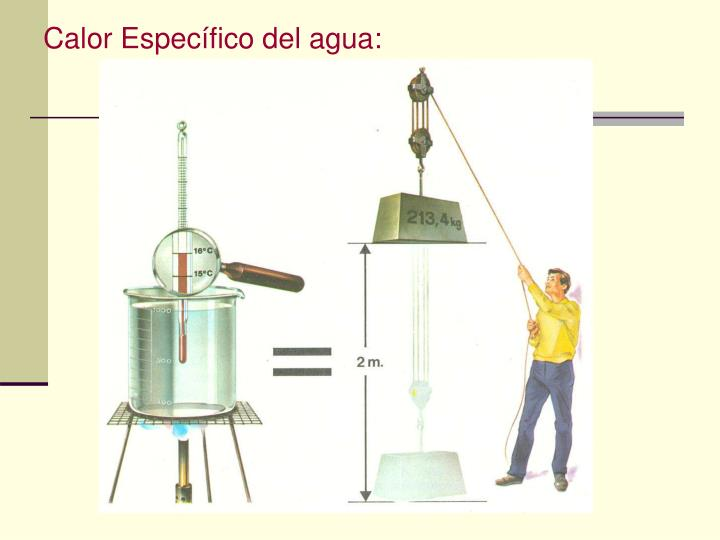 Calor Específico del agua: