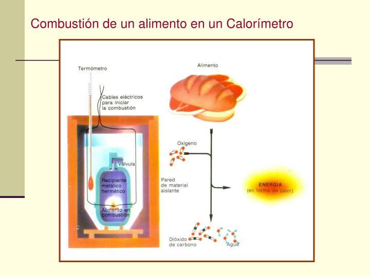 Combustión de un alimento en un Calorímetro