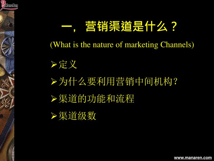 What is the nature of marketing channels