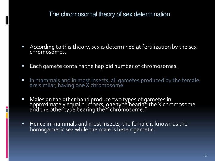 chromosomal sex determination pptx in Cambridge
