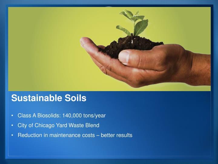 Sustainable Soils