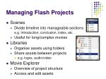 managing flash projects