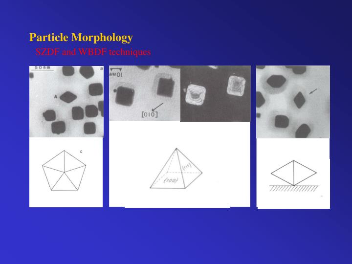 Particle Morphology