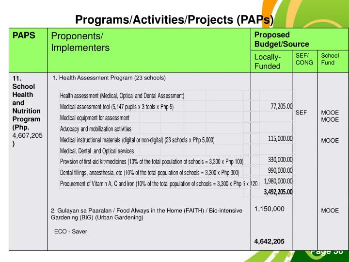 Programs/Activities/Projects (PAPs)