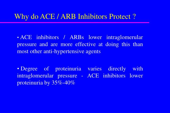 Why do ACE / ARB Inhibitors Protect ?