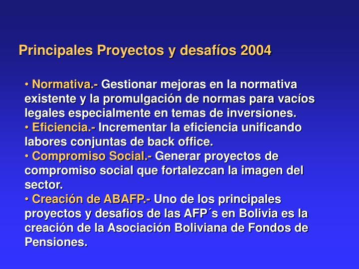 Principales Proyectos y desafíos 2004