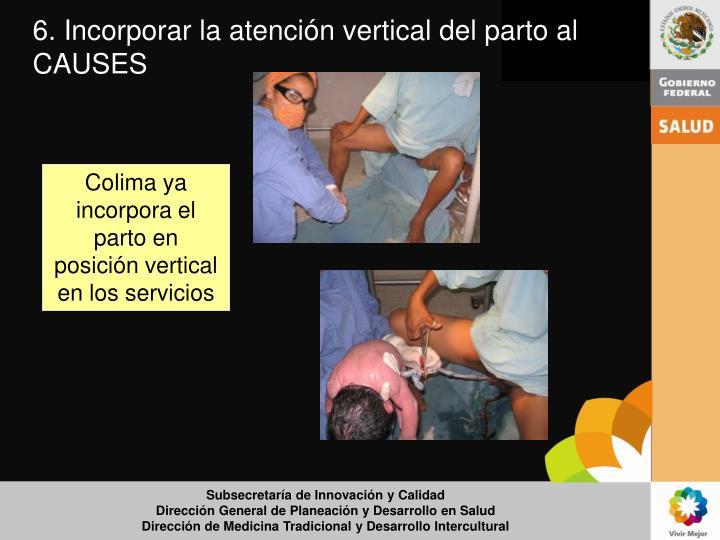 6. Incorporar la atención vertical del parto al CAUSES