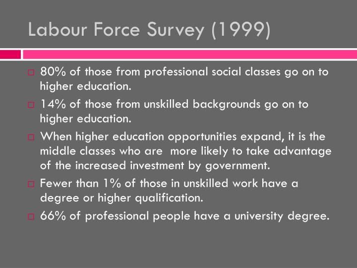 Labour Force Survey (1999)
