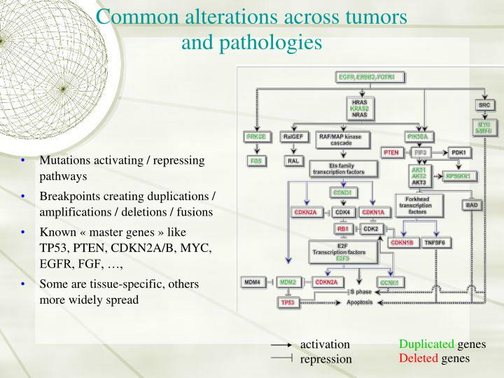 Common alterations across tumors