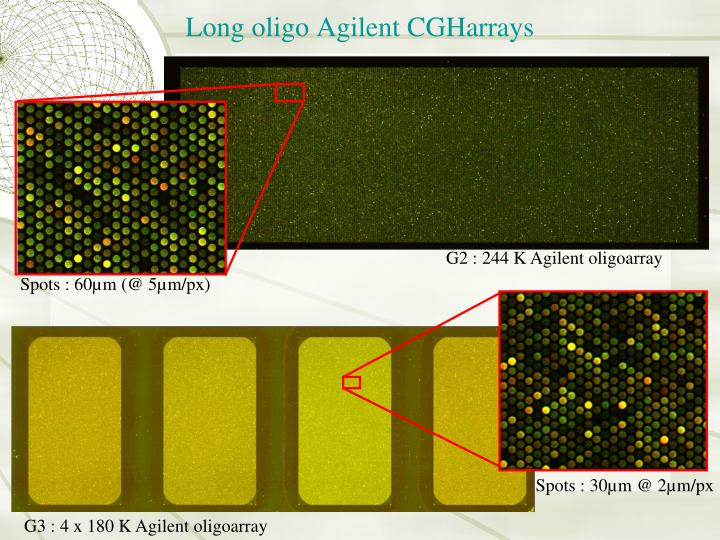 Long oligo Agilent CGHarrays