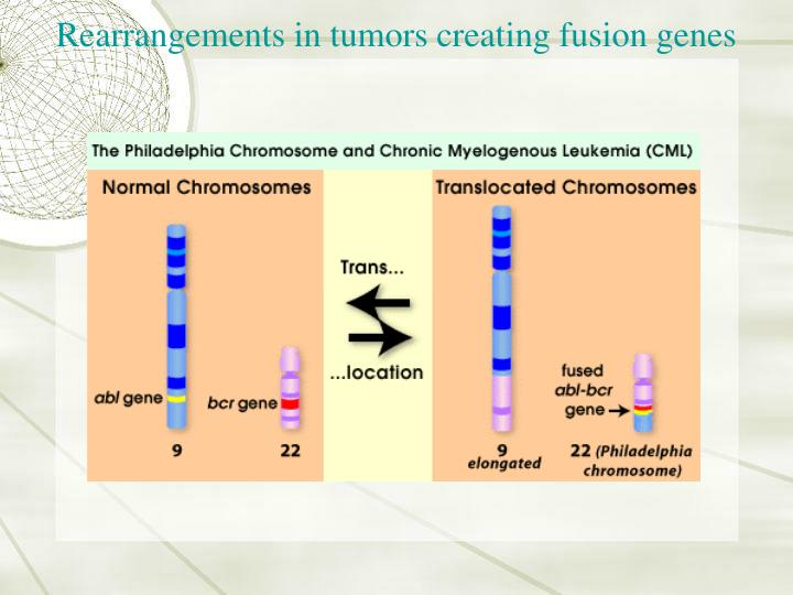 Rearrangements in tumors creating fusion genes