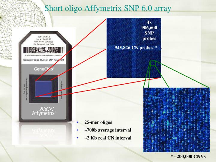 Short oligo Affymetrix SNP 6.0 array