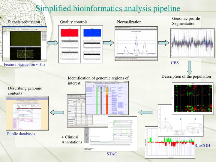 Simplified bioinformatics analysis pipeline