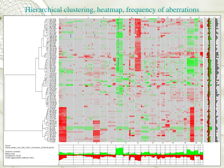 Hierarchical clustering, heatmap, frequency of aberrations