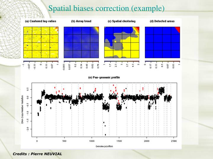Spatial biases correction (example)