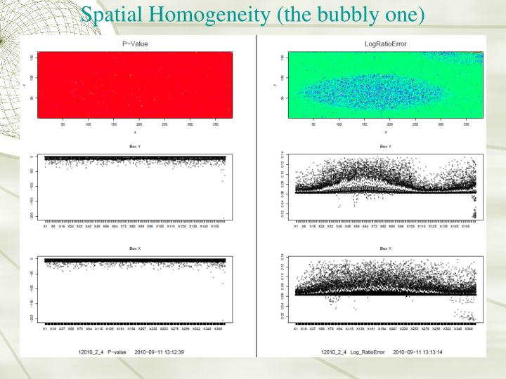Spatial Homogeneity (the bubbly one)