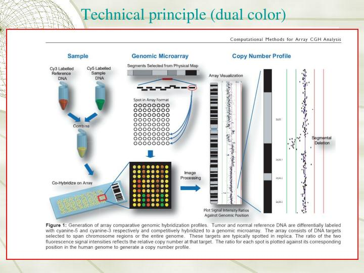 Technical principle (dual color)