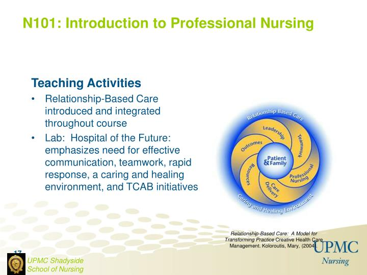 N101: Introduction to Professional Nursing