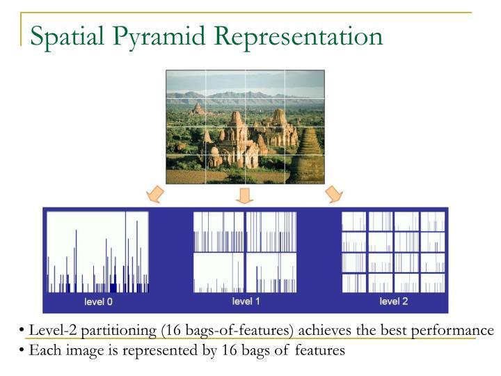 Spatial Pyramid Representation