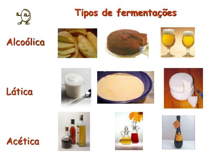 Tipos de fermentações