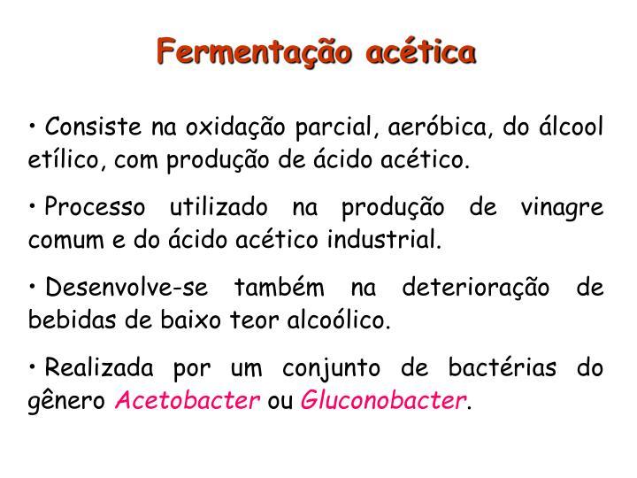 Fermentação acética