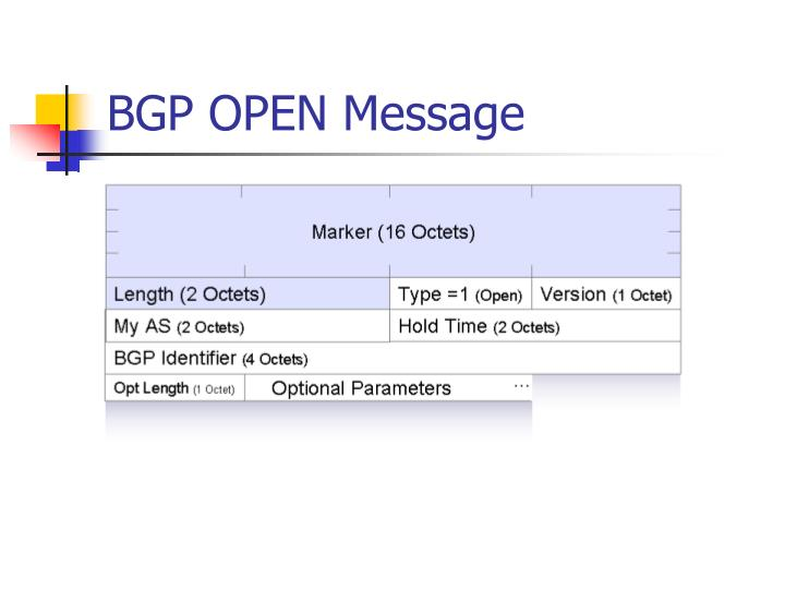 BGP OPEN Message