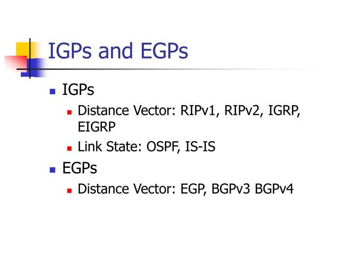 IGPs and EGPs