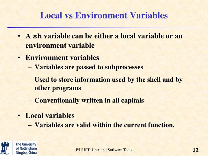 Local vs Environment Variables
