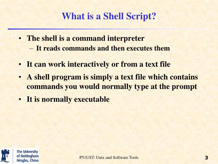 What is a shell script