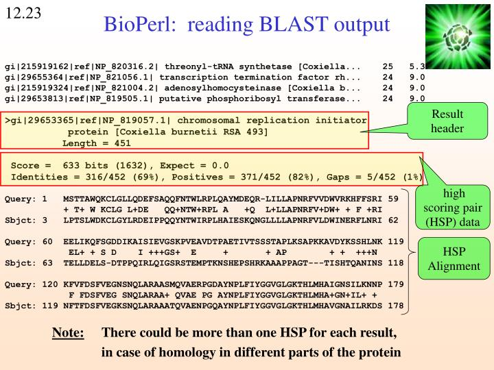 BioPerl:  reading BLAST output