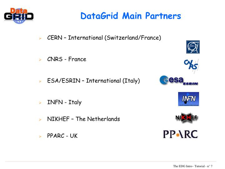 DataGrid Main Partners