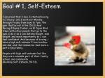 goal 1 self esteem