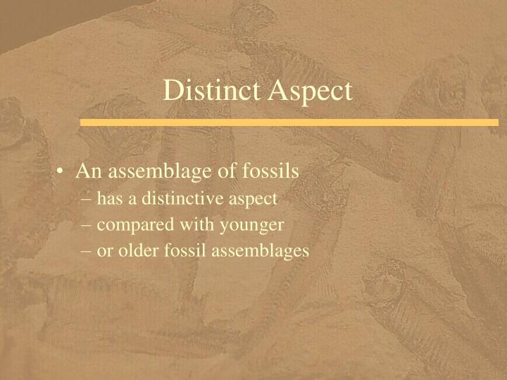 Distinct Aspect