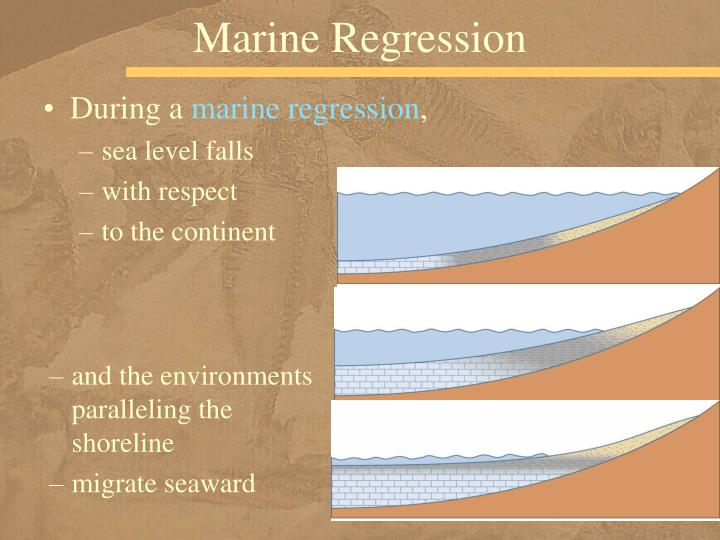 Marine Regression