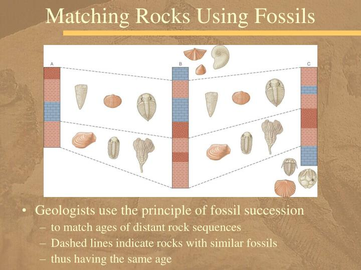 Matching Rocks Using Fossils